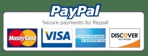 Conference registration fee